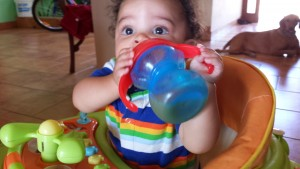 Titus enjoying some cantaloupe juice in his walker.