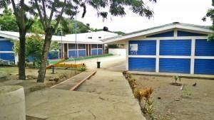 Newton School